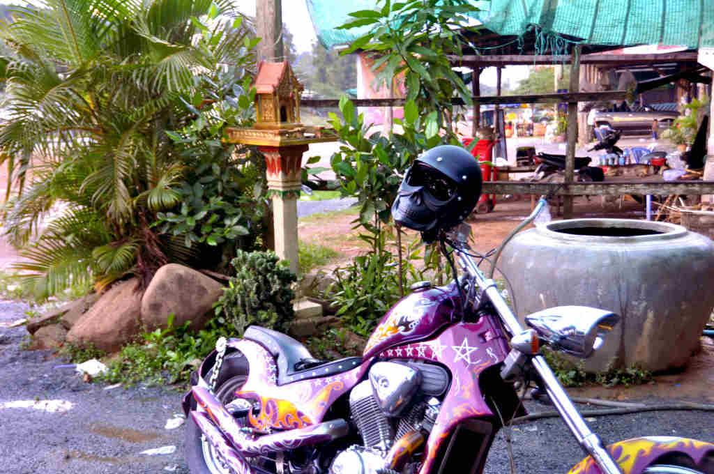 Cambogia amore
