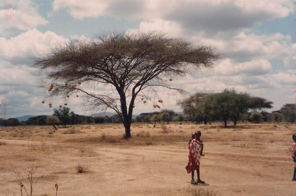 volontariato in kenya africa