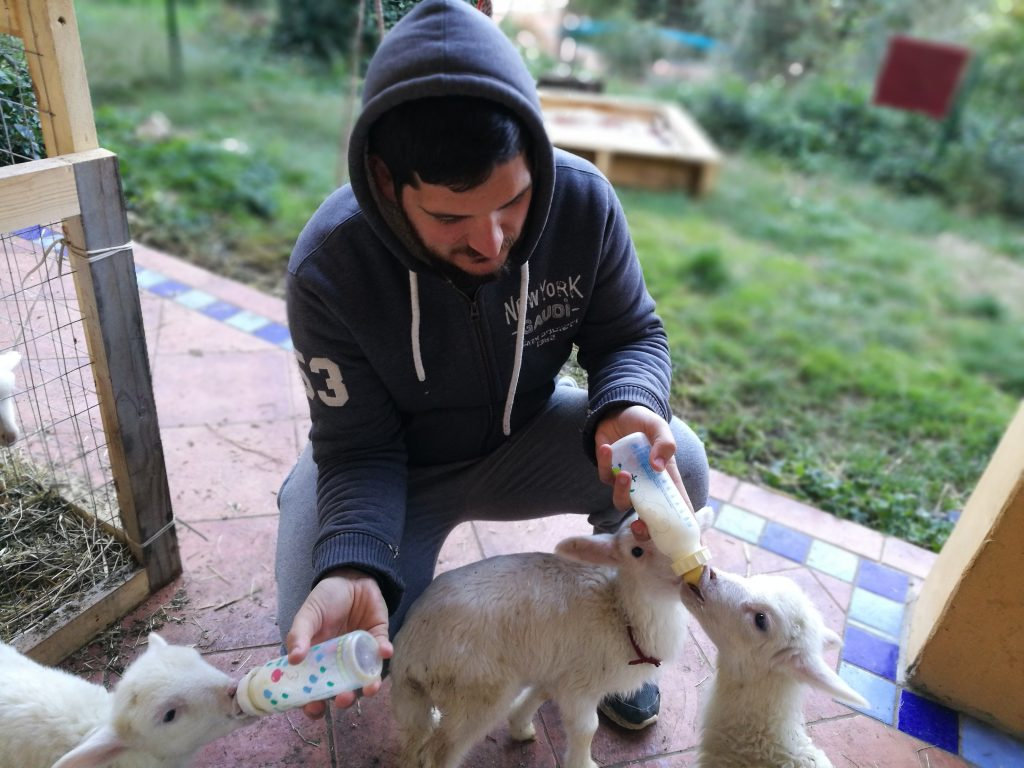 Cambiare vita cuori nomadi