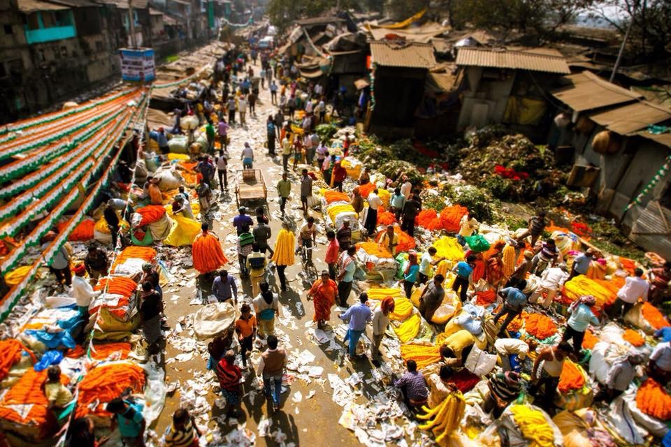 Vivere in India